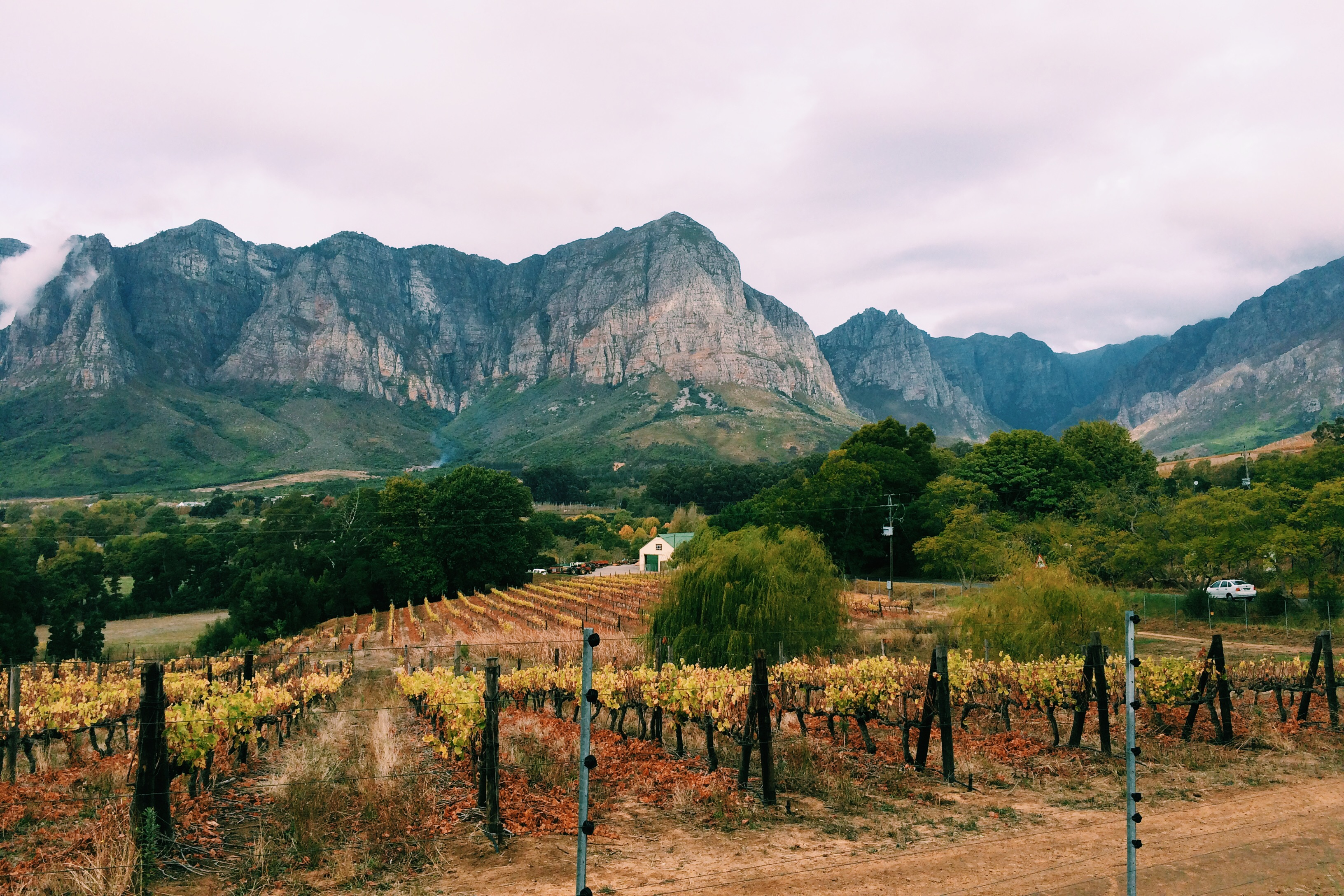 Staying in Stellenbosch: Where to Stay in The Winelands