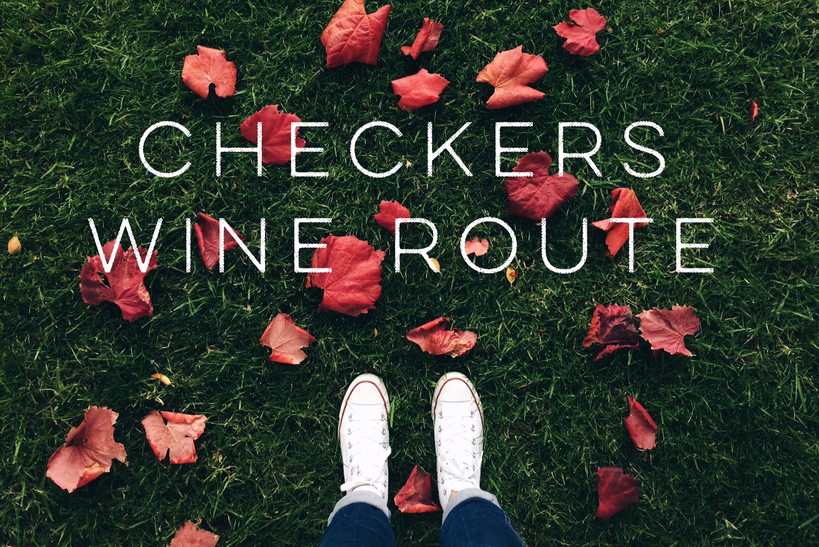 Exploring the Checkers Wine Route