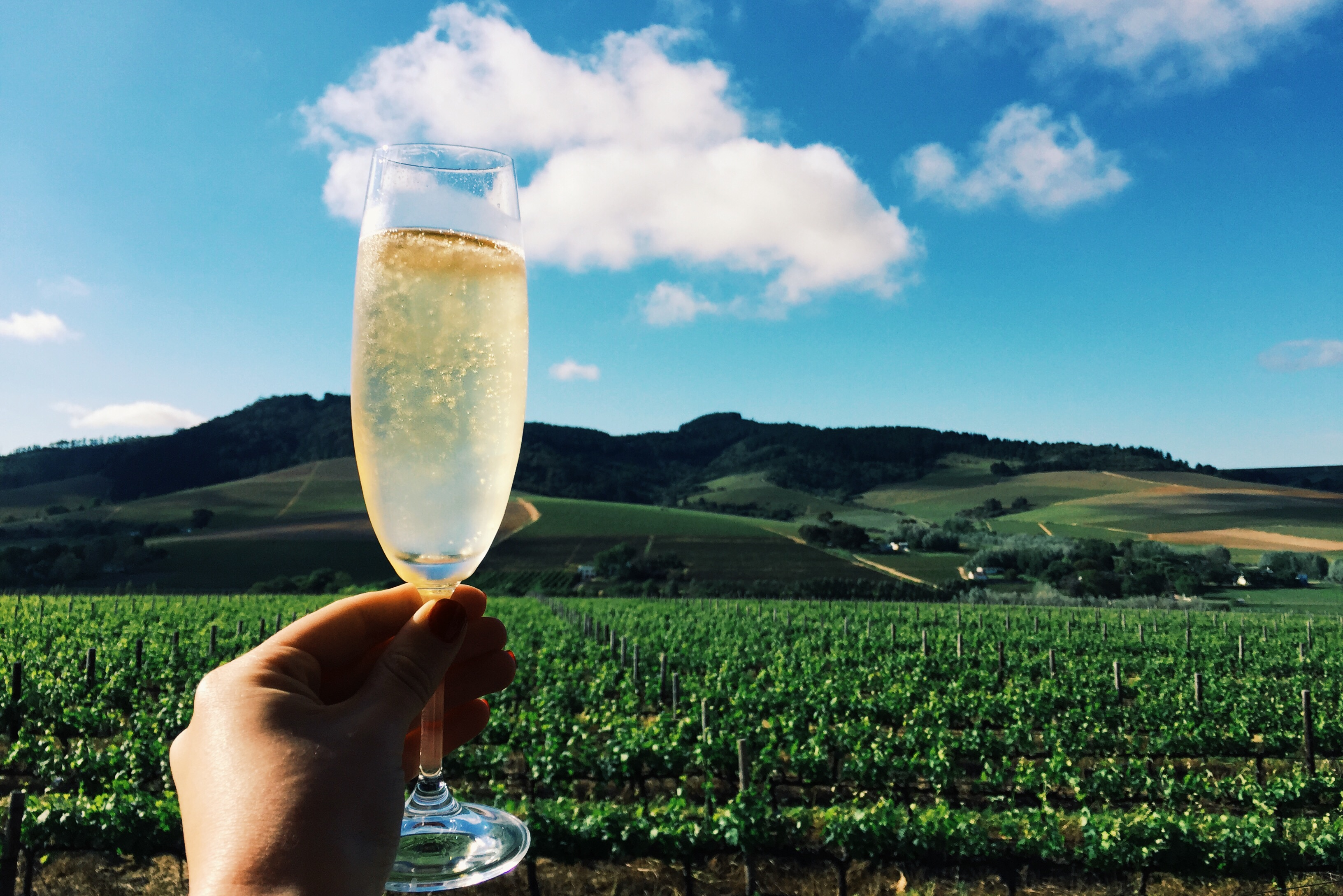 Exploring the Stellenbosch Valley: Day 2